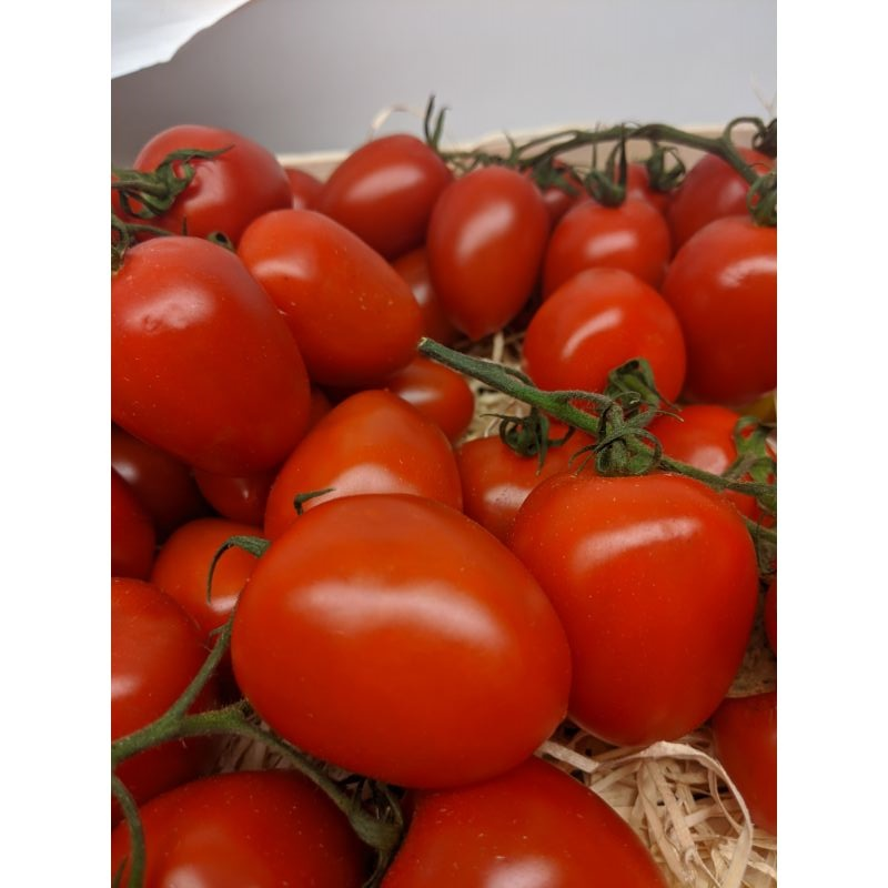 Tomato Piccadilly 300g