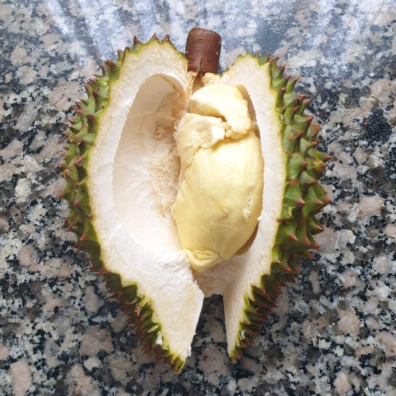 Durian pc