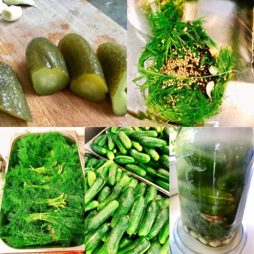 Fermented Gherkin Pickle (House-made)