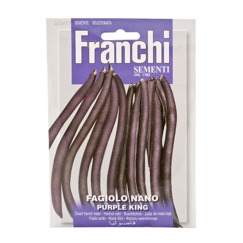 Franchi Bean Kidney Purple King