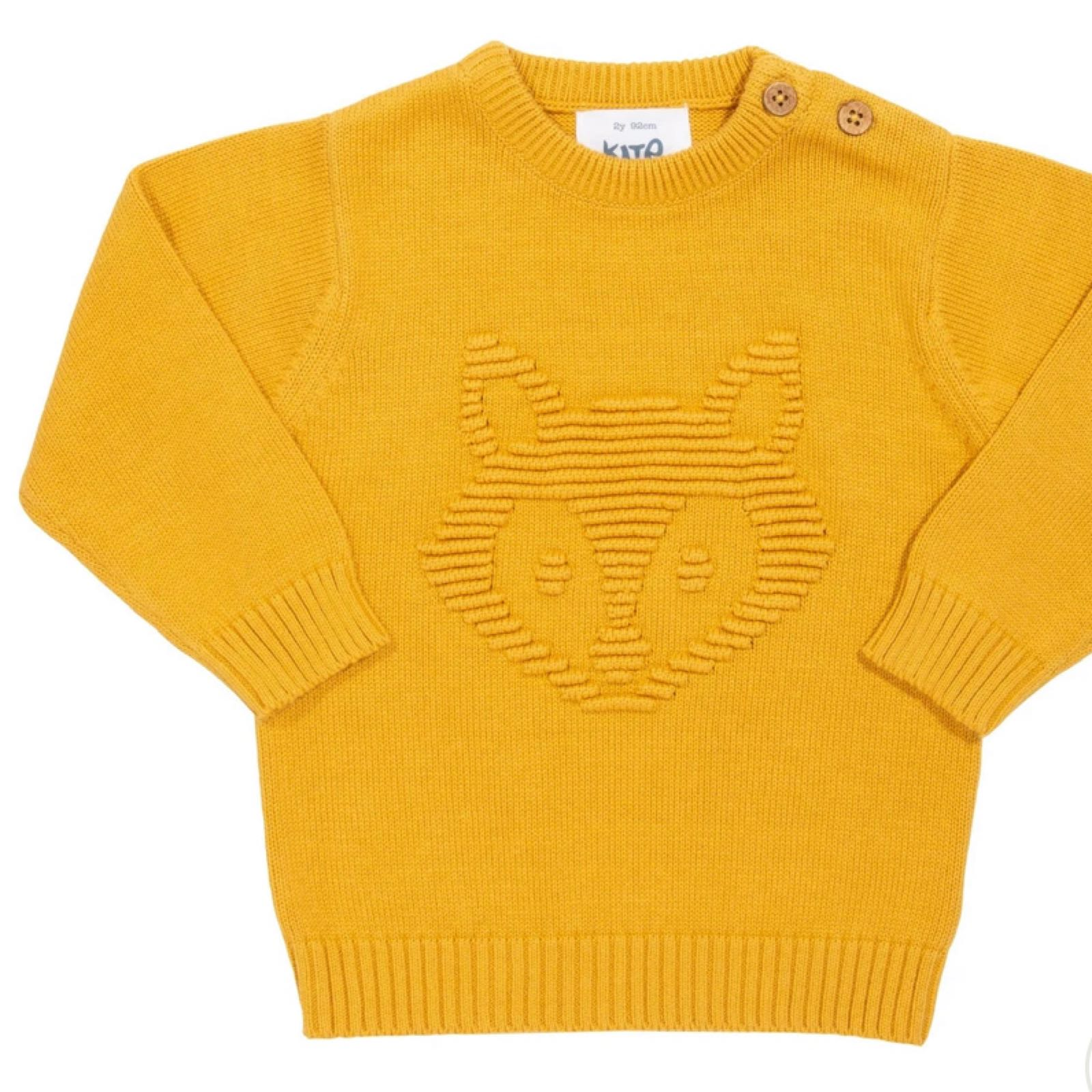 Little Cub jumper