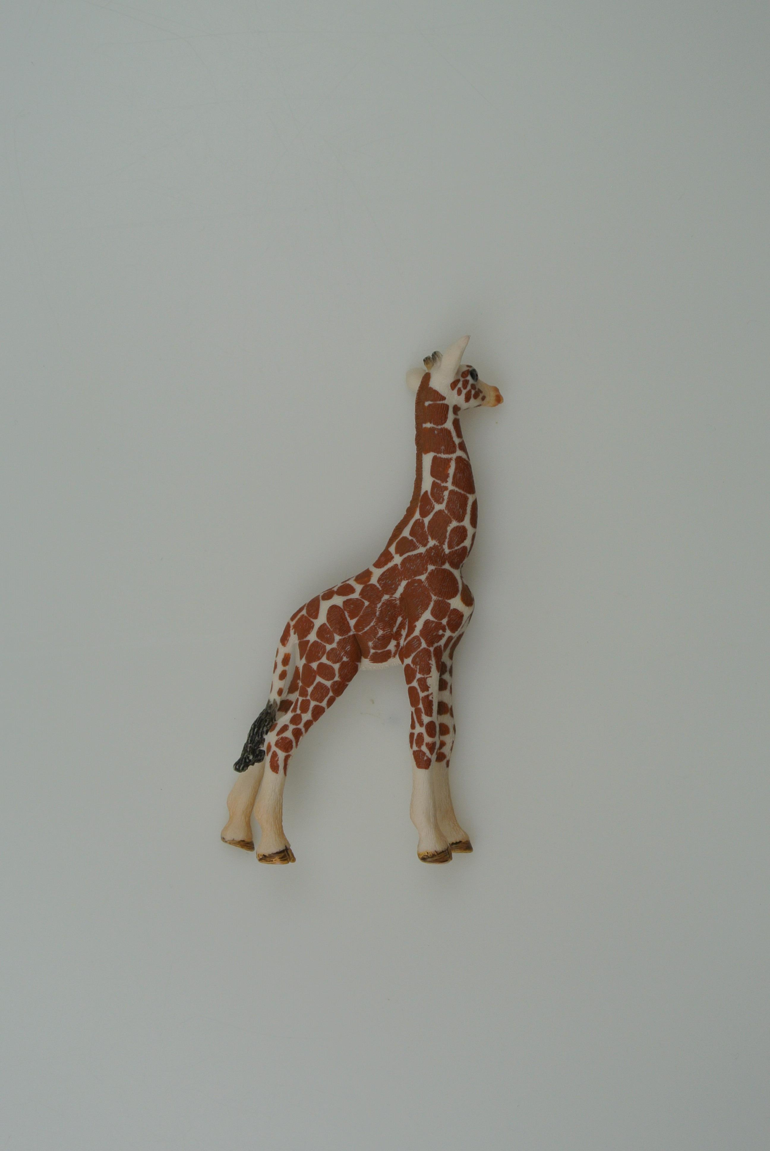 Schleich giraf