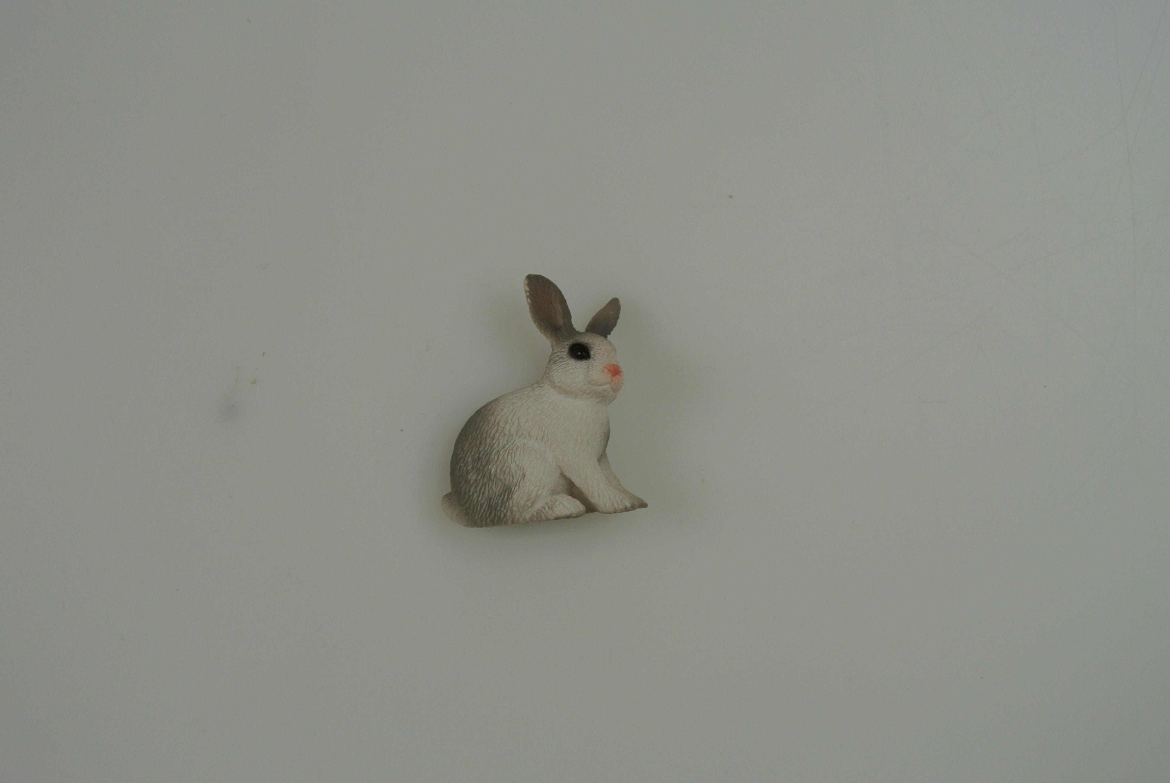 Schliech kanin