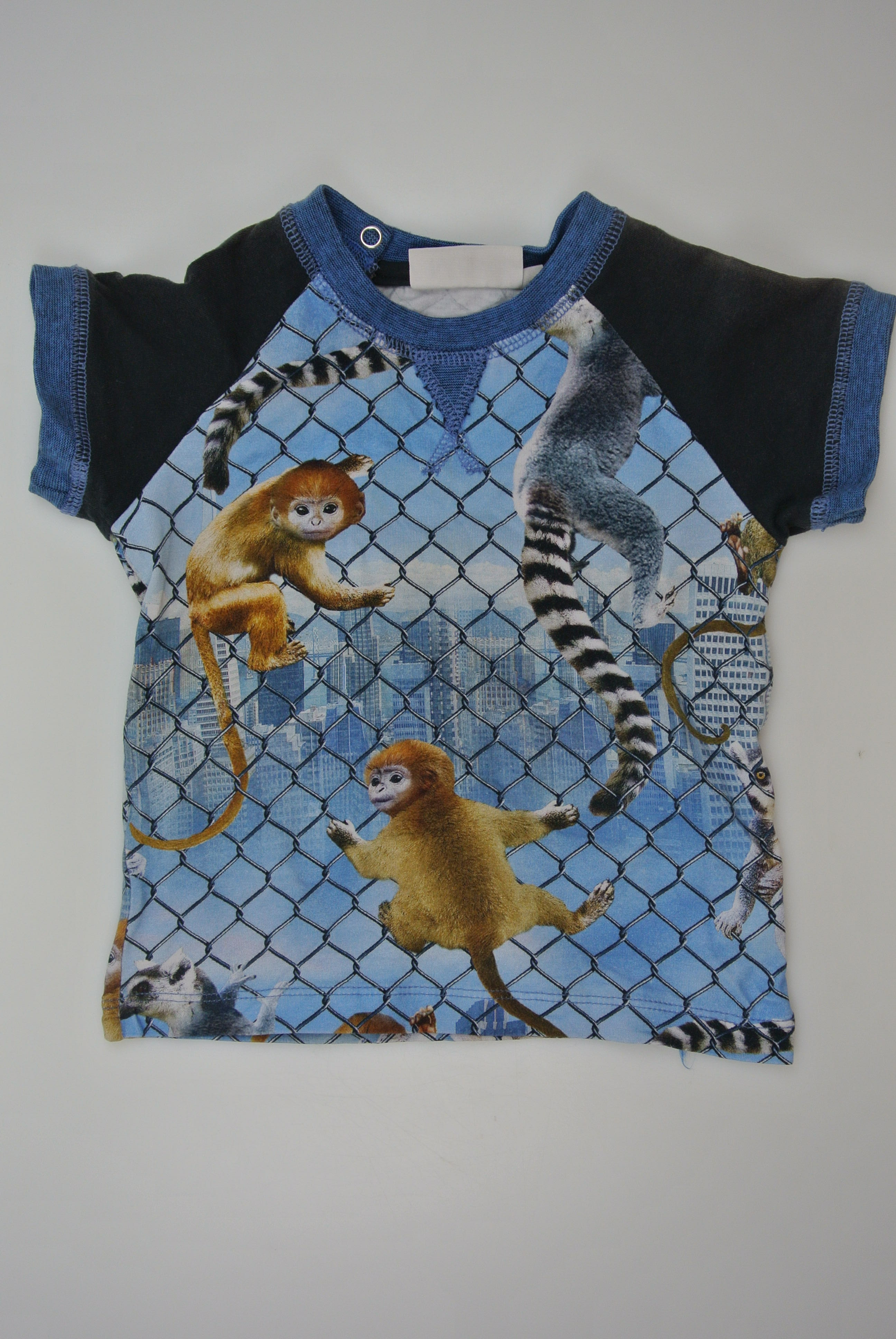 Molo t-shirt str 80 dreng
