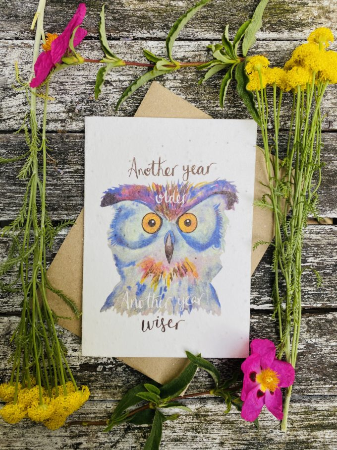 Wildflower Greeting cards (for all occasions)