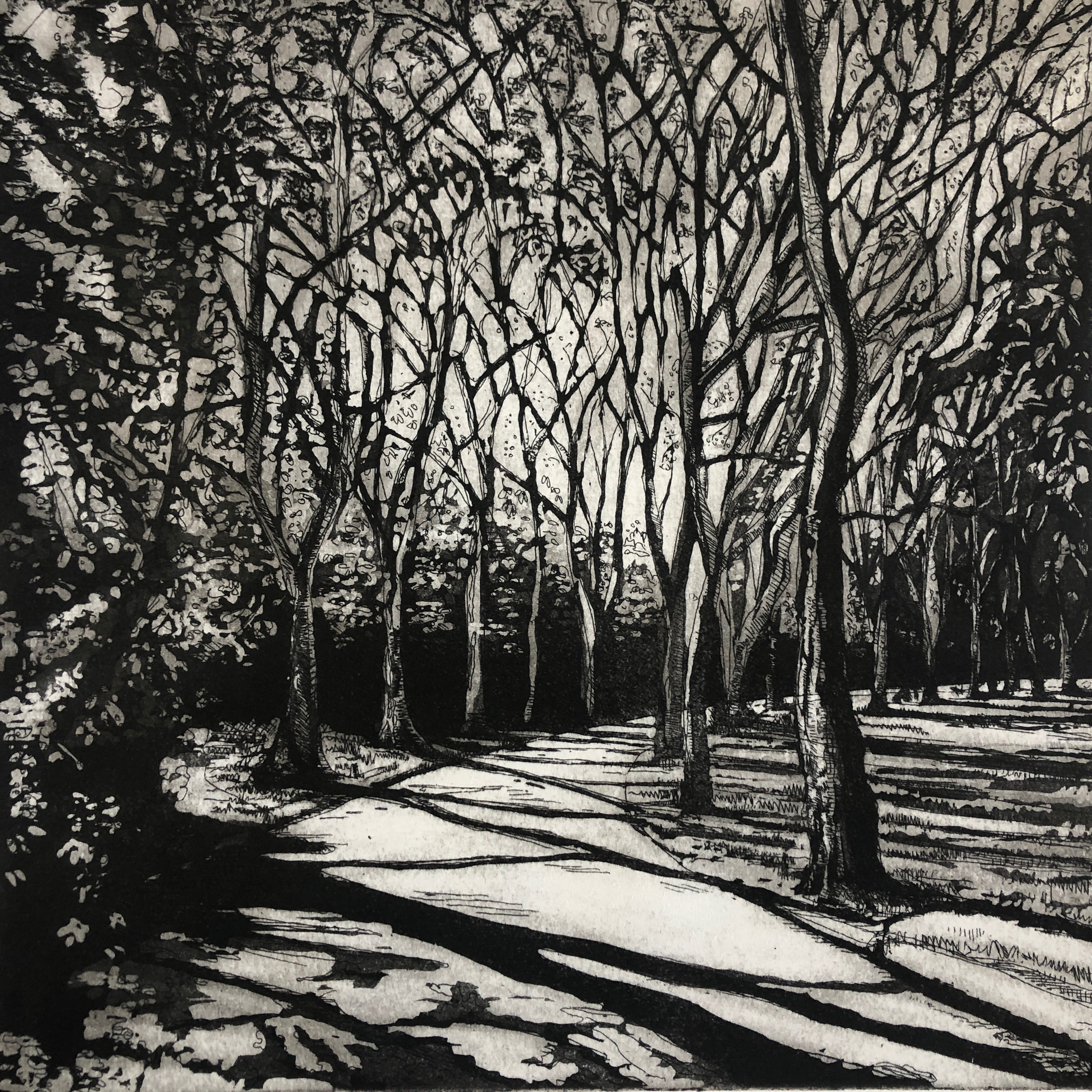 Avenue of Trees, NW3