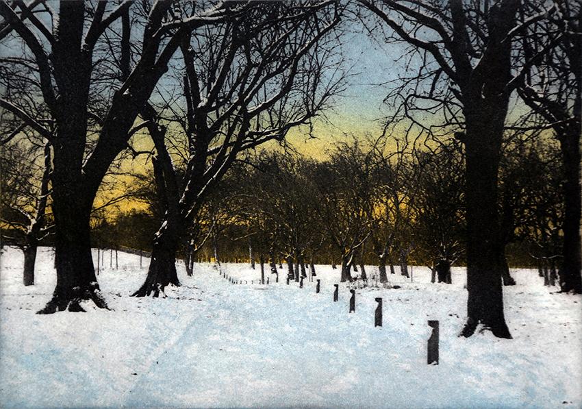 Twilight in Regent's Park