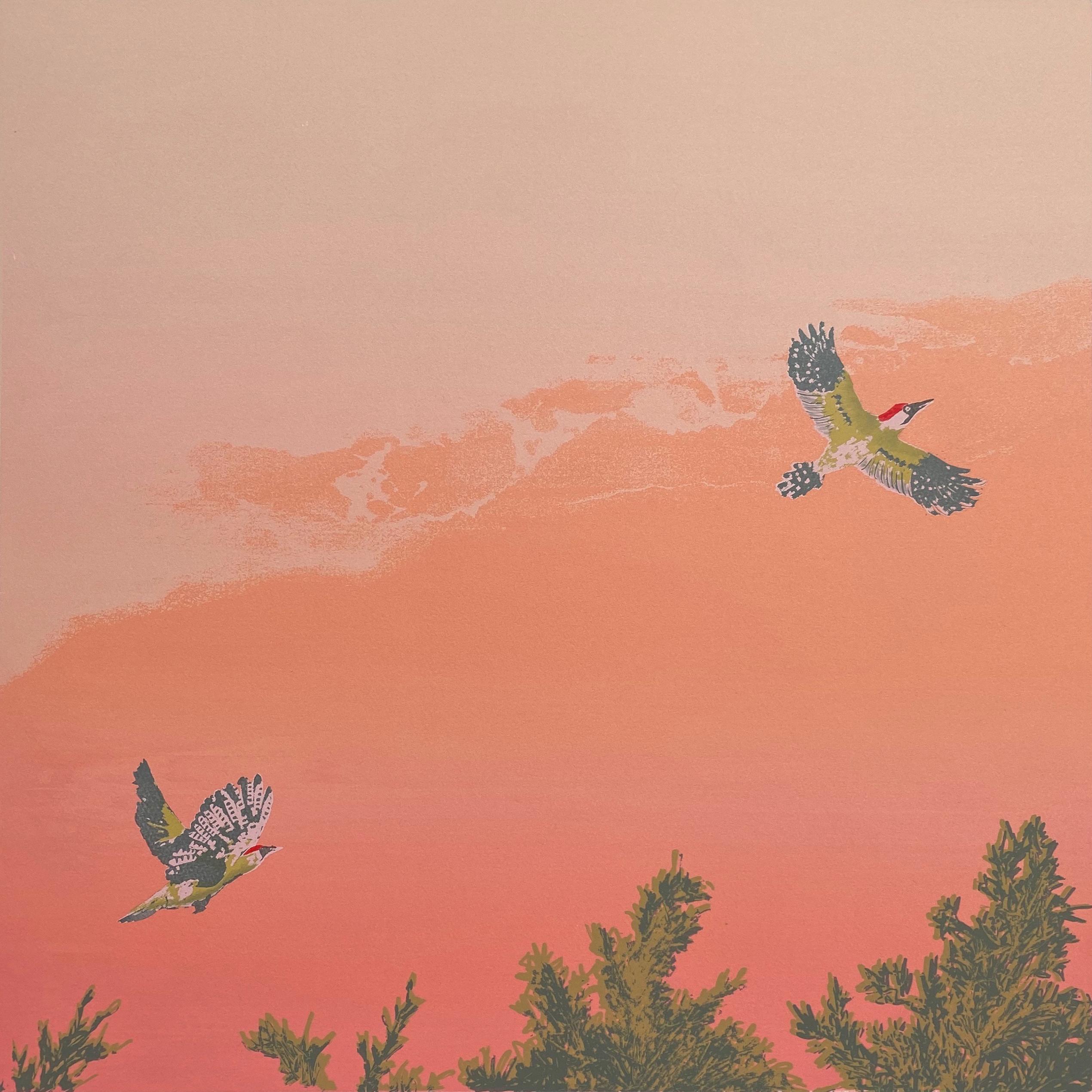 Lockdown Birding, Woodpecker