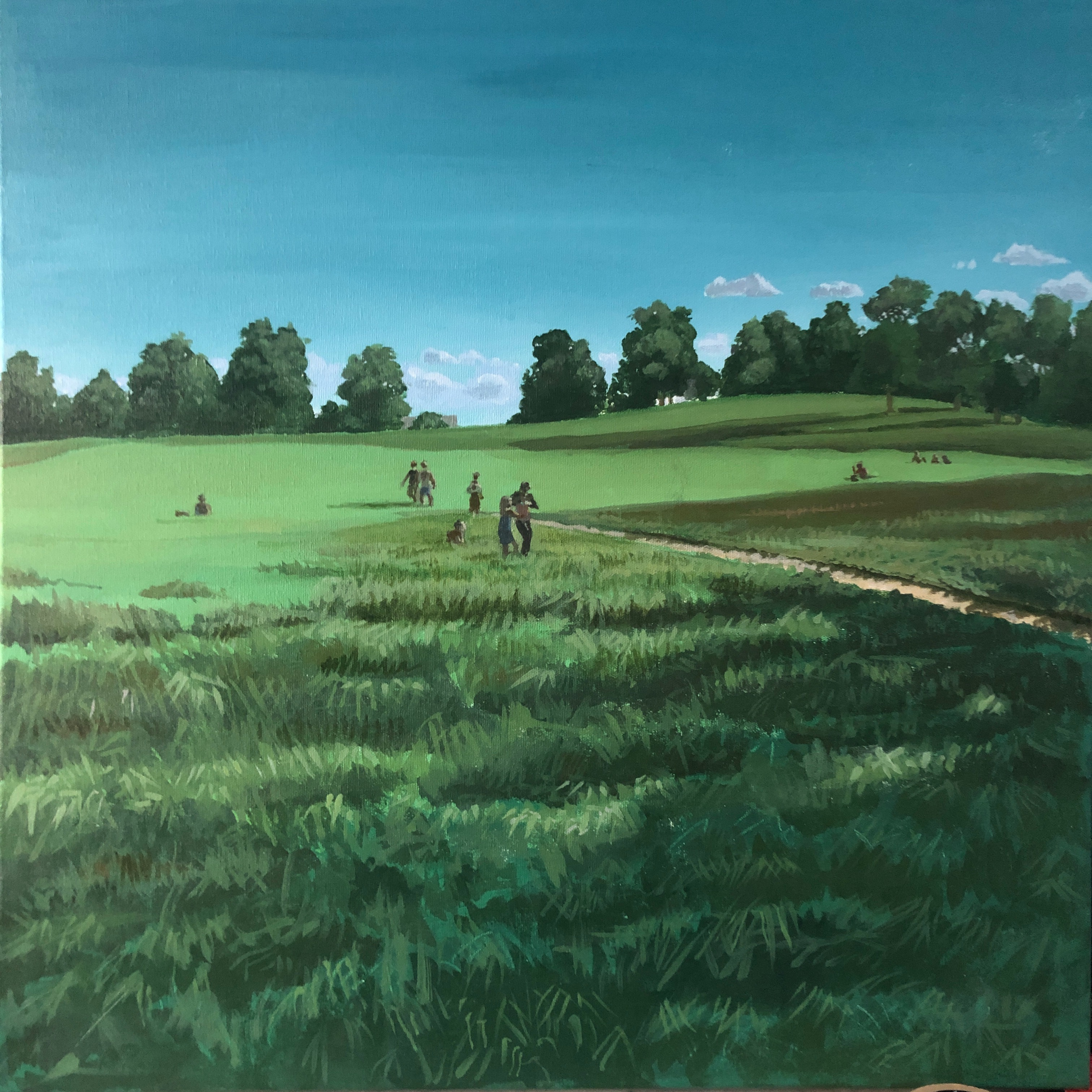 Heath Summer Meadow