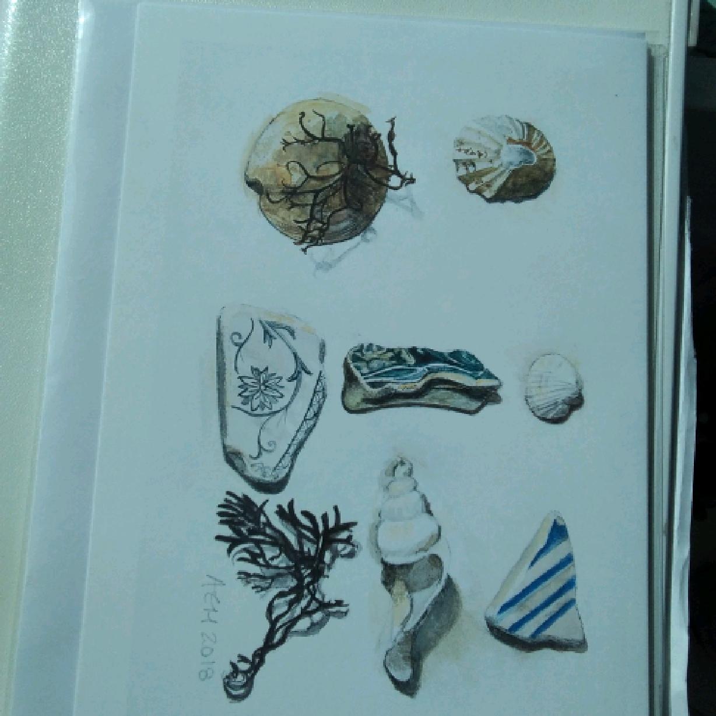 Arran Beach Finds