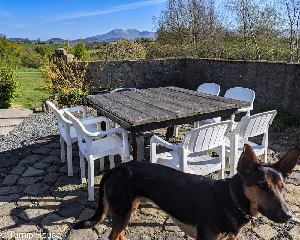 Terrace Compass Table 16th May