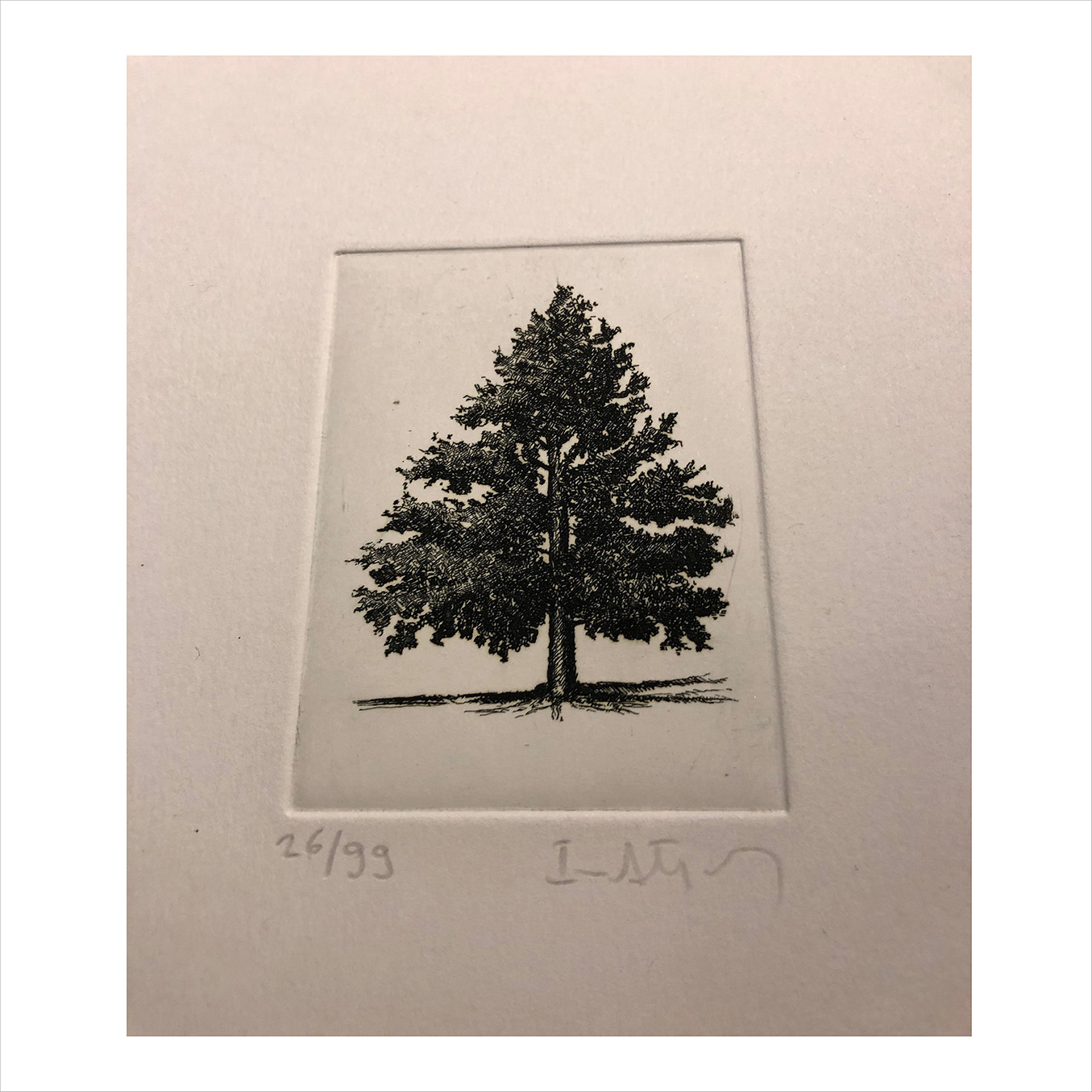 etching small tree