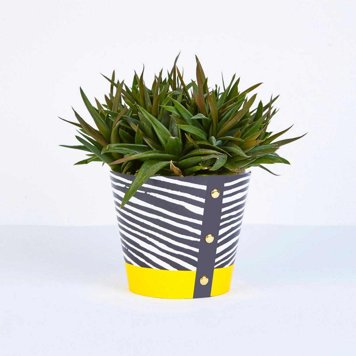 Wald -  Large Plant Pot Cover