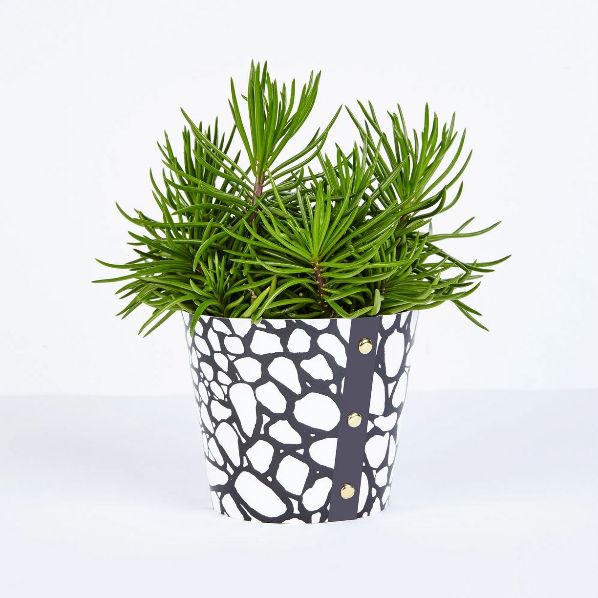Wald -  Large Plant Pot Cover