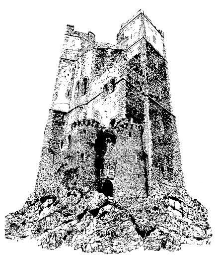 The Castle Tap