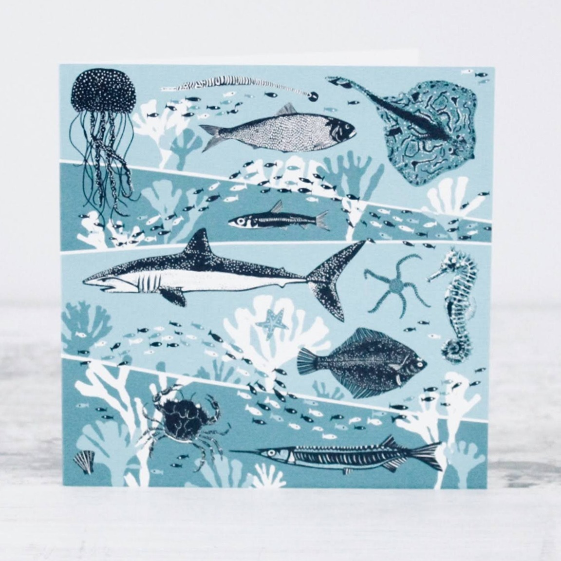 Sea Card by Folded Forest