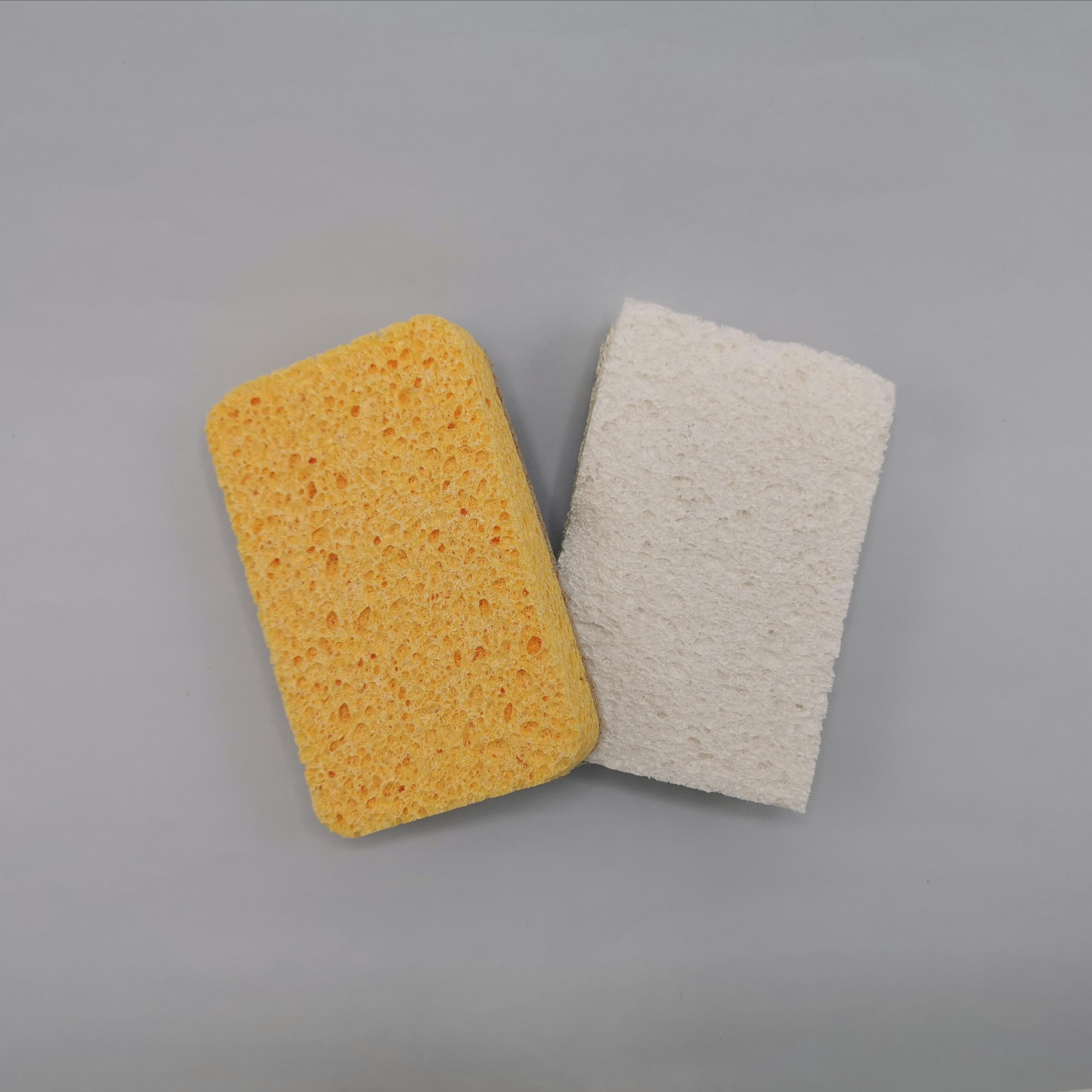 Compostable Sponge and Scourer Set