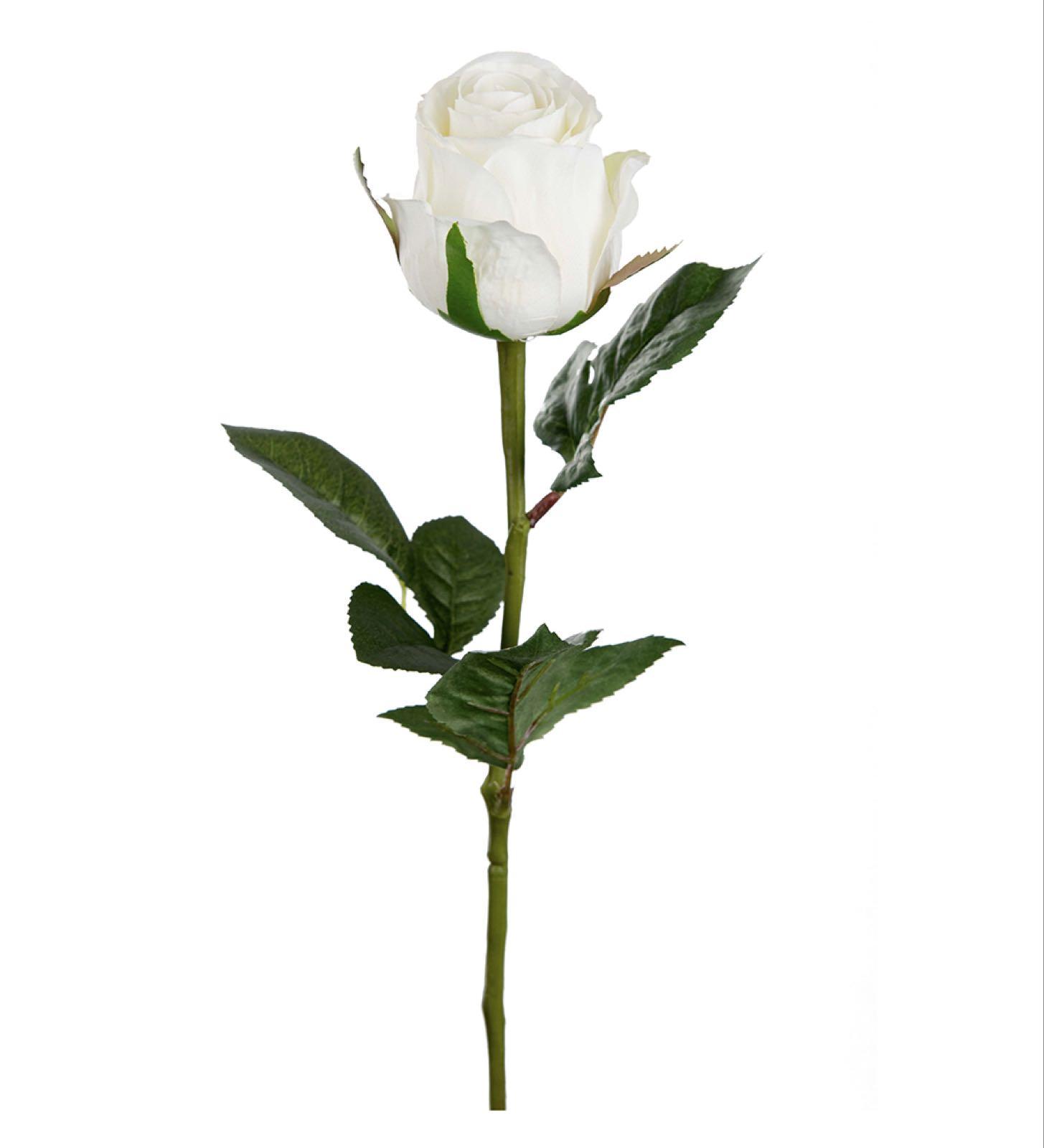 Hvit Rose. Kunstig