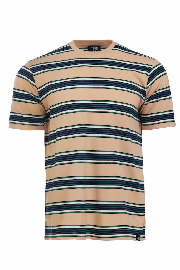Dickies Lithia T-skjorte