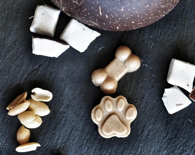 Bag o'Bones dog treats (Gluten Free, Vegan)