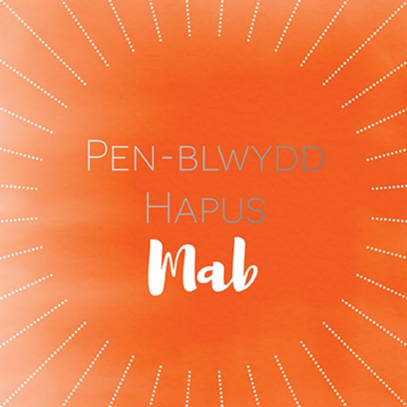 Penblwydd Hapus Mab (SP20)