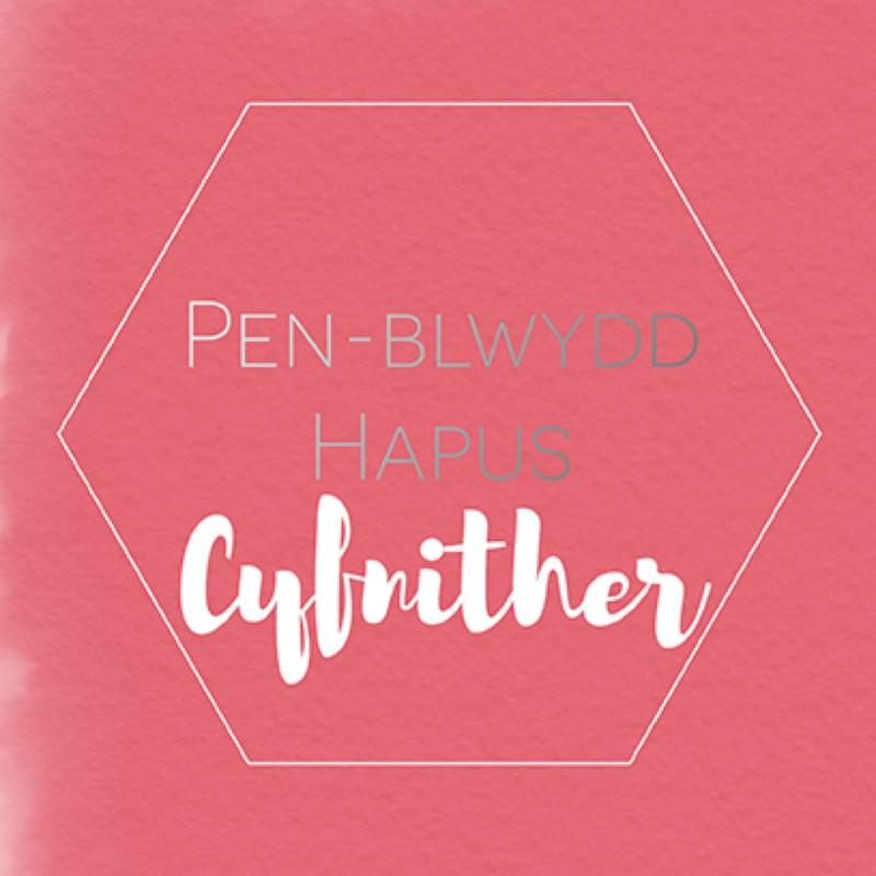 Penblwydd Hapus Cyfnither (SP10)