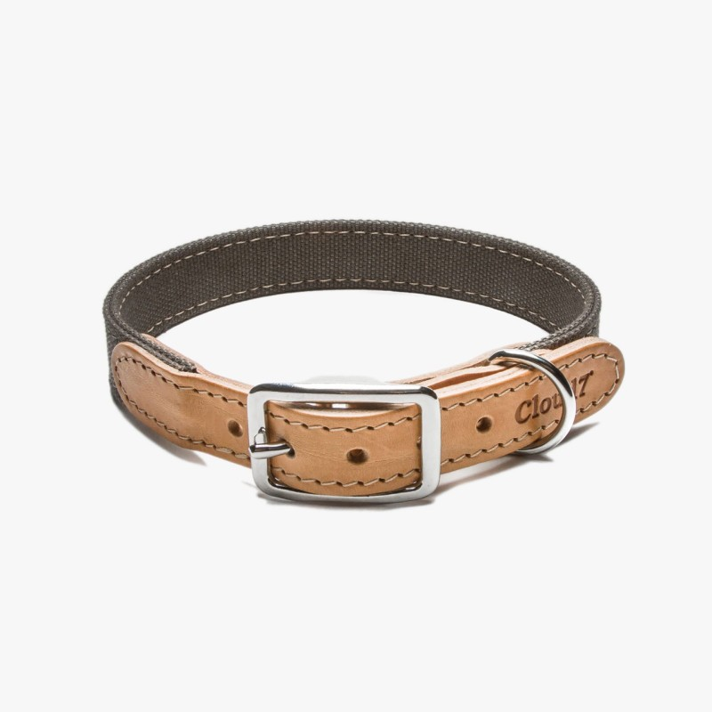 Cloud7 Hundhalsband Tivoli med Canvas