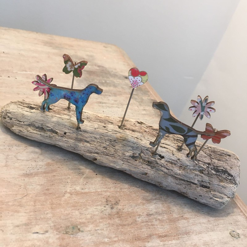 Pointers on driftwood