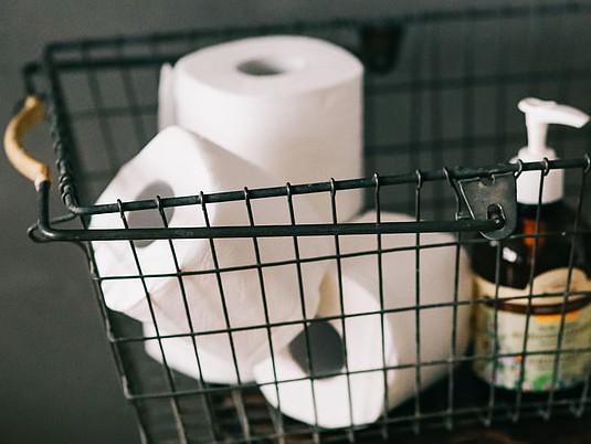 Toilet rolls x 2 loose