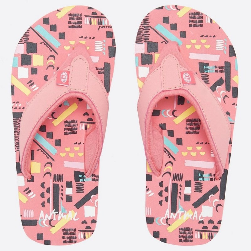 Animal Swish Multi Flip Flop