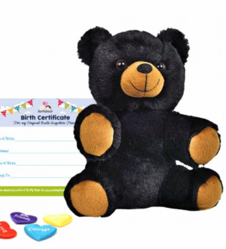 """8"""" black bear, includes stuffing, a wish, birth certificate and a bag"""