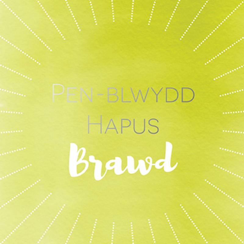 Penblwydd Hapus Brawd (SP19)