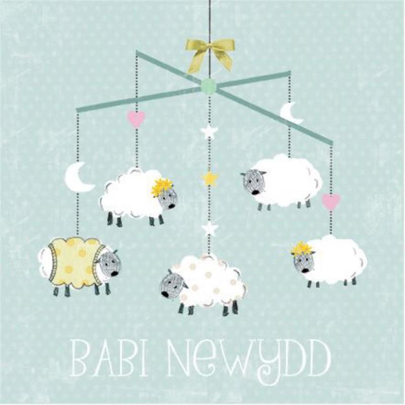 Babi Newydd (CAR059)