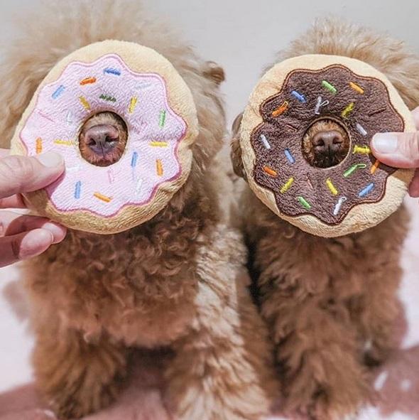 Doughnut plush toys (2 pack)