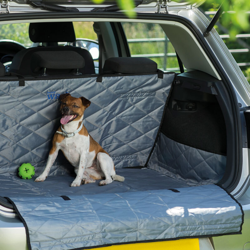 Henry wag - Boot & Bumper protection