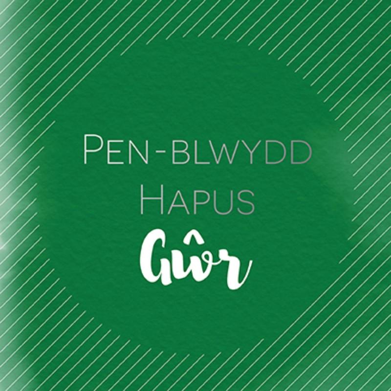 Penblwydd Hapus Gwr (SP23)
