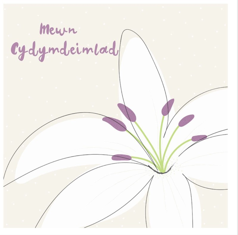Mewn Cydymdeimlad (CAR015)