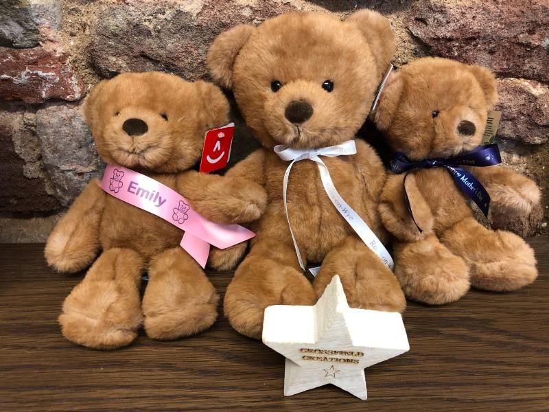 Eco Friendly Teddy