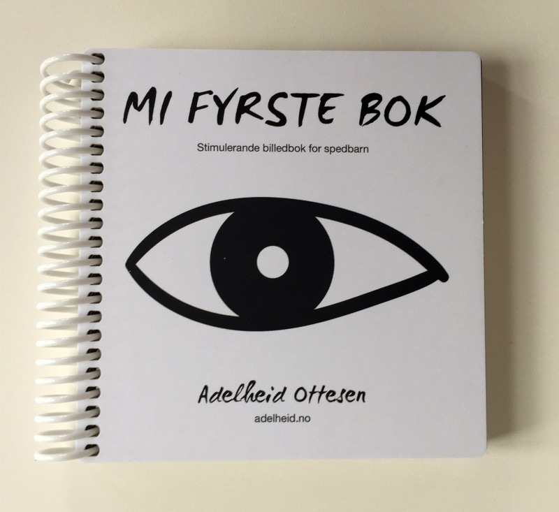 Mi fyrste bok