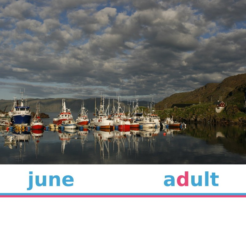 North Cape Sightseeing – June 2021 – Adult