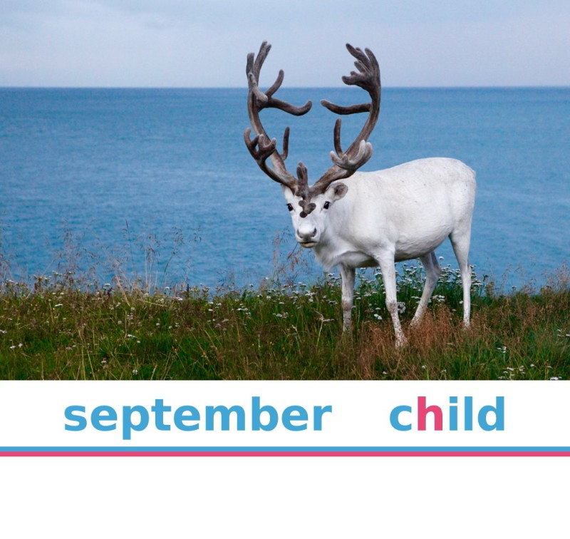 North Cape Sightseeing - September 2019 - Child