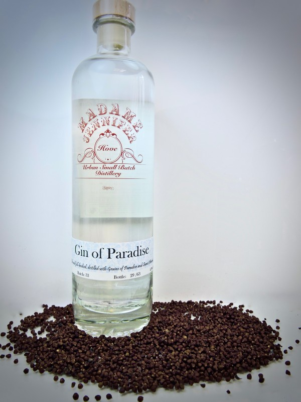 Gin of Paradise - 500ml