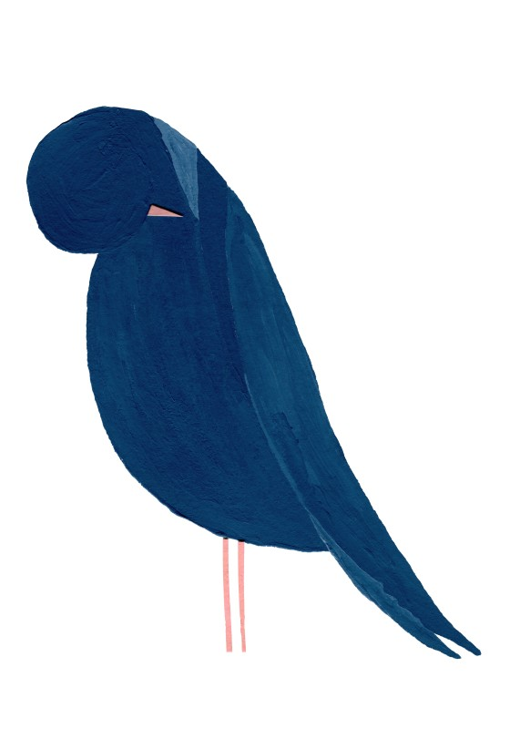 Blue bird (2 sizes) (Free shipping)