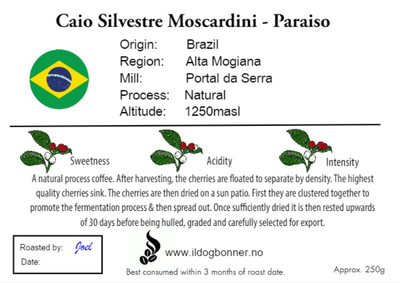 Caio Silvestre Moscardini - Paraiso