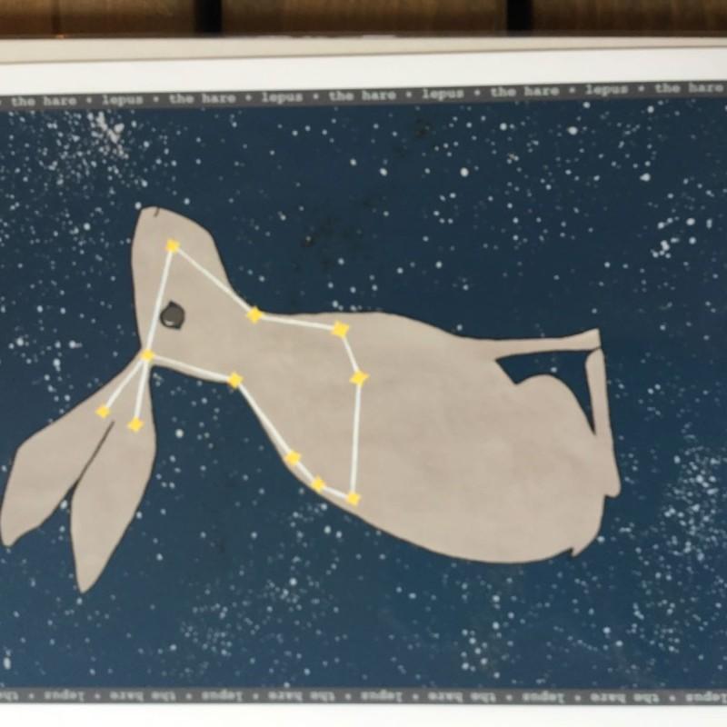 LLS Starry night - Hare Print