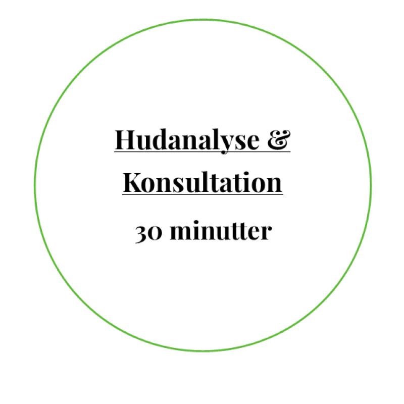 Hudanalyse / Konsultation