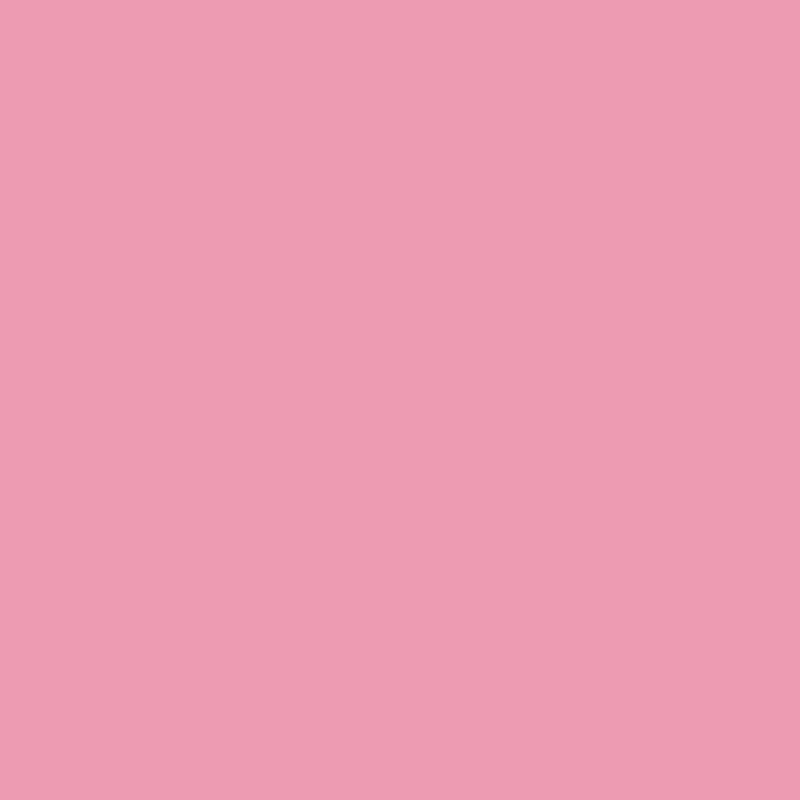 FO-308 Piglet Pink Light