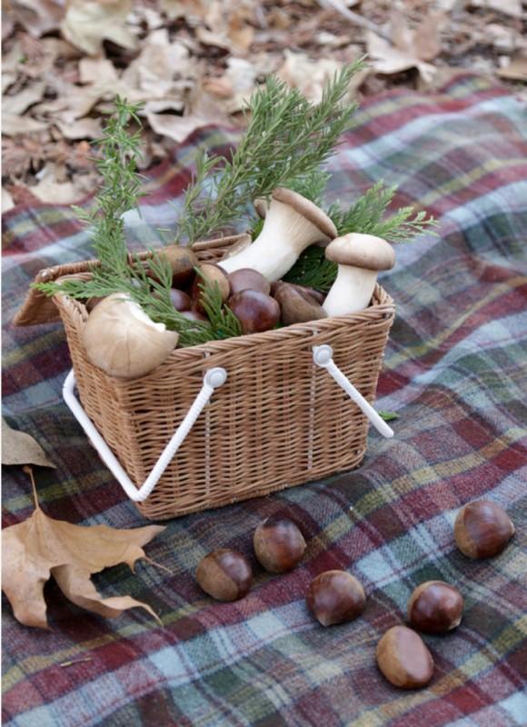 Olli Ella - Piki piknikkurv natur