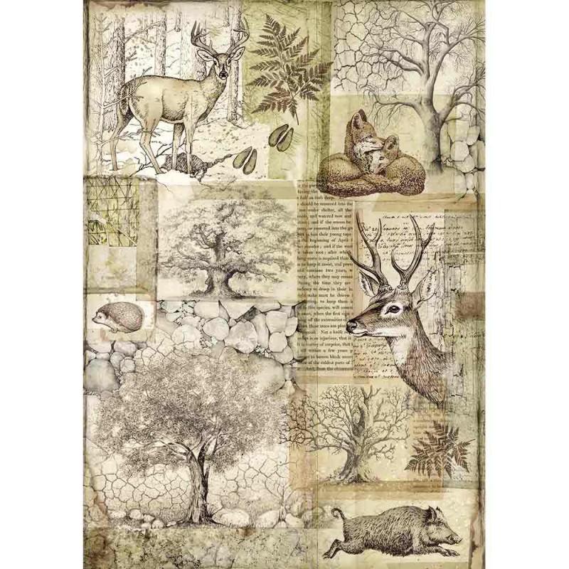 Riisipaperi Stamperia, A4, Forest peura