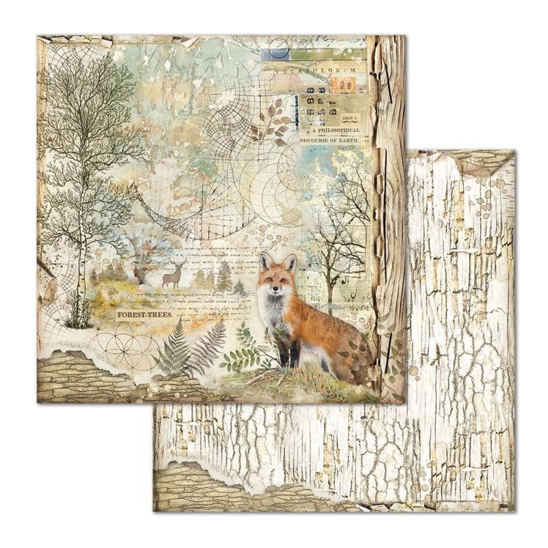 Skräppipaperi Stamperia, 30x30cm, Forest kettu